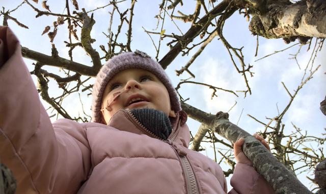 Esther-i-træ