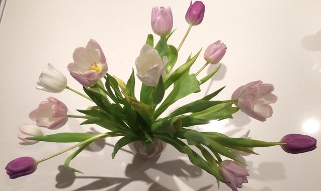 IMG_0909-blomst